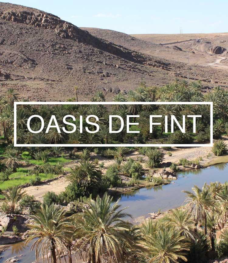 oasisfint